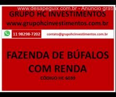 FAZENDA DE CRIAÇÃO DE BÚFALO OPORTUNIDADE COM RENDA INVESTIDORES