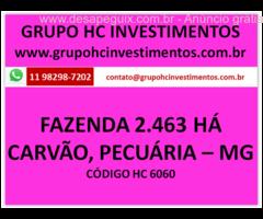 Fazenda 2.463 HA - Indústria de carvão, Pecuária, Agricultura.