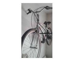 Bicicleta Caloi Aro 26 21 Marchas 100 Sport Feminina