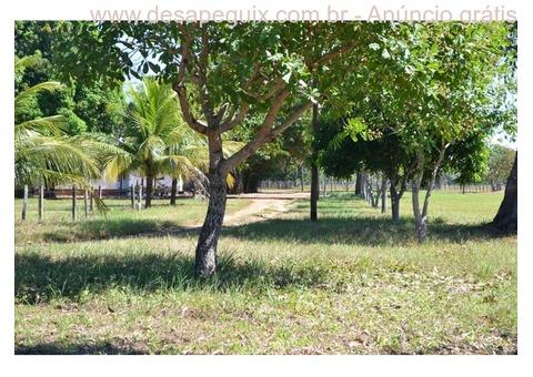 Fazenda de 844 Alqueires com Extração de Minerais - Argila - Areia Autossuficientes no Tocantis