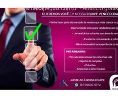 Seleção e Recrutamento - Executivo de Vendas - Excelente Rentabilidade